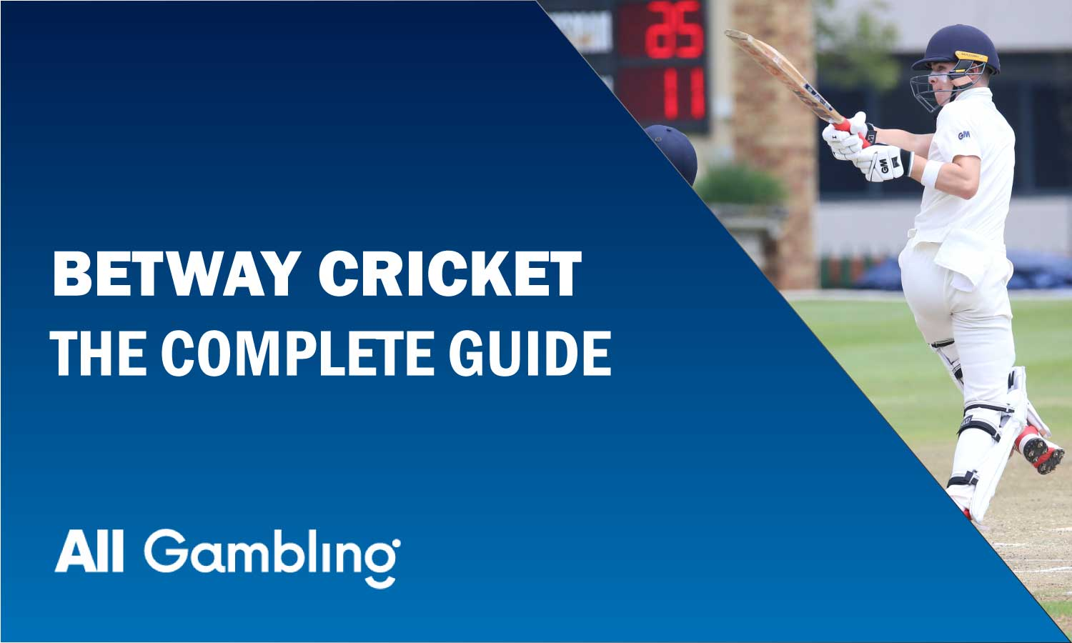 betway-cricket-guide